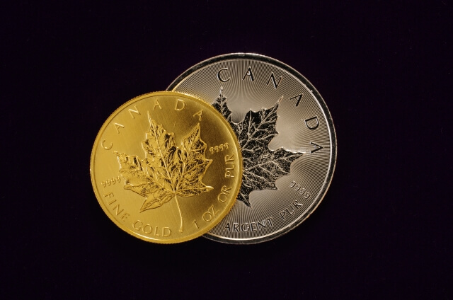 カナダコイン
